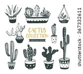 hand drawn cacti collection ... | Shutterstock .eps vector #367332611
