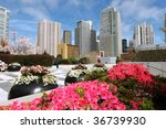 Colorful Flowers At Yerba Buena ...