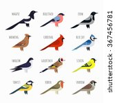 vector set of colorful bird... | Shutterstock .eps vector #367456781