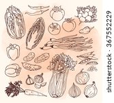 doodle vector illustration of... | Shutterstock .eps vector #367552229