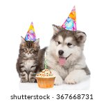Stock photo puppy and kitten in birthday hats isolated on white background 367668731