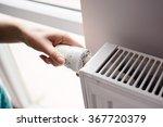 closeup on woman's hand... | Shutterstock . vector #367720379