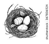 hand drawn vector illustration  ... | Shutterstock .eps vector #367836524