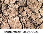 Crack Soil On Dry Season ...