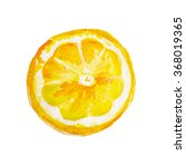 juicy lemon watercolor on paper.... | Shutterstock . vector #368019365