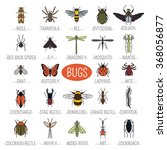 insects icon flat style. 24... | Shutterstock .eps vector #368056877