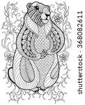 Hand Drawn Artistic Marmot ...