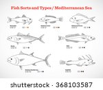 vector fish sorts and types  ... | Shutterstock .eps vector #368103587