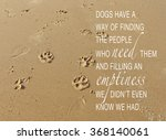 Dog Paw Prints In The Sand Wit...