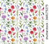 wild flowers illustrations.... | Shutterstock . vector #368175275