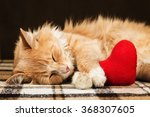 Red Fluffy Cat Asleep Hugging...
