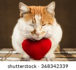 two color ginger cat meditates... | Shutterstock . vector #368342339