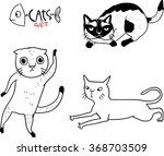 different breeds of cats  5 5  | Shutterstock .eps vector #368703509