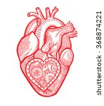 the human heart with a... | Shutterstock .eps vector #368874221