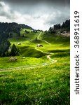 Lush Swiss Mountain Meadow Wit...