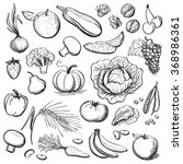 hand drawn healthy eating | Shutterstock .eps vector #368986361