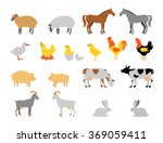 farm animal collection set.... | Shutterstock .eps vector #369059411