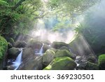 refreshing cascades in a... | Shutterstock . vector #369230501