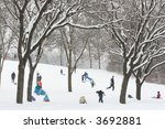 Sledding On A Snowy Day