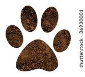 Soil Paw Print