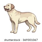 illustration of yellow dog... | Shutterstock .eps vector #369301067