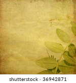 earthy background image with... | Shutterstock . vector #36942871