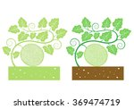 melon with leaves and product | Shutterstock .eps vector #369474719