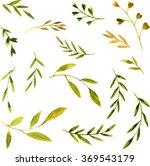 set of vector watercolor green... | Shutterstock .eps vector #369543179