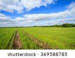 vehicle path through a vast... | Shutterstock . vector #369588785