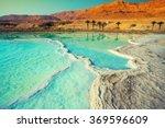 Dead Sea Salty Shore