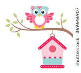 Owl On A Branch And Bird House