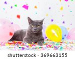 cat is having a party | Shutterstock . vector #369663155