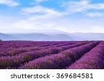 lavender field summer landscape ...   Shutterstock . vector #369684581