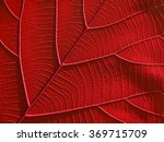 Red Leaf Texture Background  ...