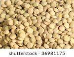lentil | Shutterstock . vector #36981175