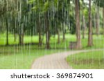 rain in the forest  the natural ... | Shutterstock . vector #369874901