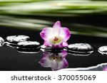 Orchid With Long Leaf And...