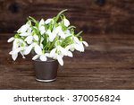 bouquet of snowdrops in little... | Shutterstock . vector #370056824