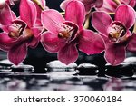 Orchid With Black Stones On...