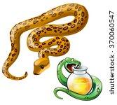 snake venom and poison. vector. | Shutterstock .eps vector #370060547