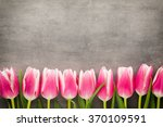 tulips on the grey  background. | Shutterstock . vector #370109591