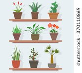 house plants and flowers in... | Shutterstock .eps vector #370110869