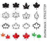 Maple Leaf Icons. Vector...