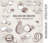 vector illustration of fruits... | Shutterstock .eps vector #370217414