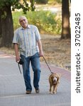 Stock photo smiling old senior relaxing in park and having fun with his dog 37022485