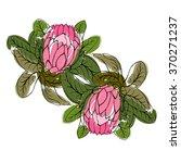 colorful vector protea flower ... | Shutterstock .eps vector #370271237