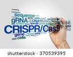 crispr cas9 system for editing  ... | Shutterstock . vector #370539395