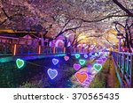cherry blossoms sakura at night ... | Shutterstock . vector #370565435