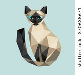 low poly  cat. triangle... | Shutterstock .eps vector #370638671