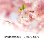 Spring Border Background With...